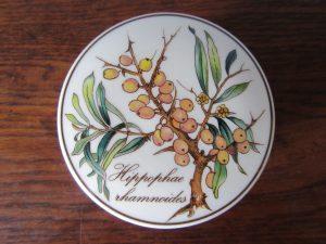 Villeroy Boch Botanica Trinket